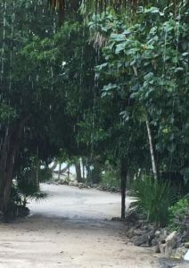rain in Cabo